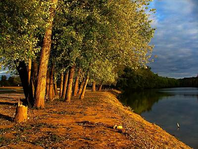 Julie Riker Dant Photograph - Late Evening On White River by Julie Dant