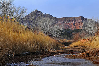 Late Fall In Palo Duro Canyon Art Print by Karen Slagle