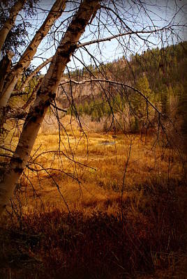Late Fall Art Print by Jerry Cahill
