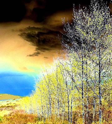 Digital Art - Late Fall Tree Line by Will Borden