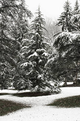 Art Print featuring the photograph Late Season Snow At The Park by Gary Slawsky