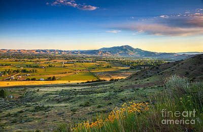Photograph - Late Spring Time View by Robert Bales