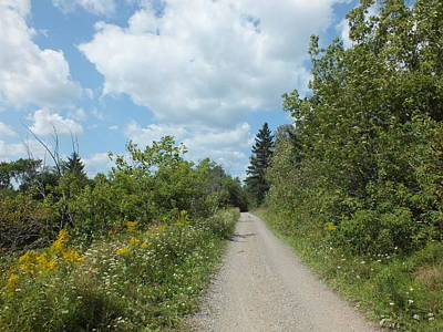 Photograph - Late Summer Trail by Gene Cyr