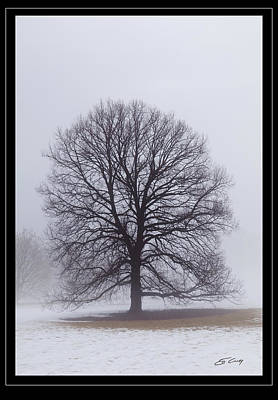 Late Winter Fog   Framed Art Print by Ed Cilley