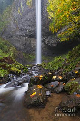 Fall Photograph - Latourell Falls Autumn by Mike Dawson