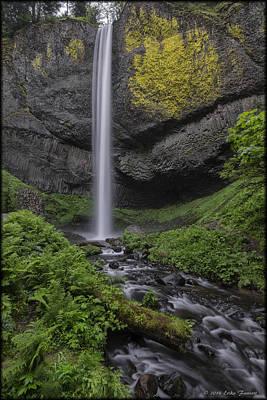 Photograph - Latourell Falls by Erika Fawcett