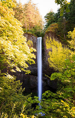 Photograph - Latourell Falls In Oregon by Athena Mckinzie