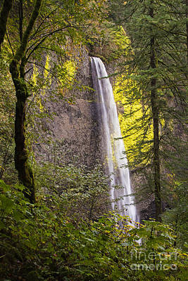 Photograph - Latourell Falls Upper View by Sonya Lang