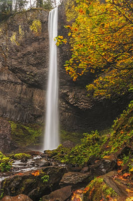 Photograph - Latourell Falls Autumn by Loree Johnson