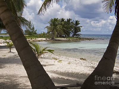 Photograph - Laughing Bird Caye by Jim West