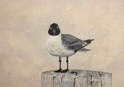 Art Print featuring the painting Laughing Gull by Stan Tenney