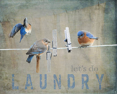 Bluebird Photograph - Laundry Day - Lets Do Laundry by Jai Johnson