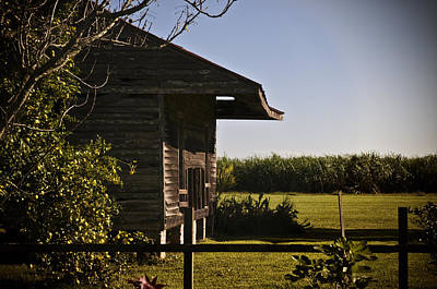 Art Print featuring the photograph Laura Plantation Slave Home by Ray Devlin