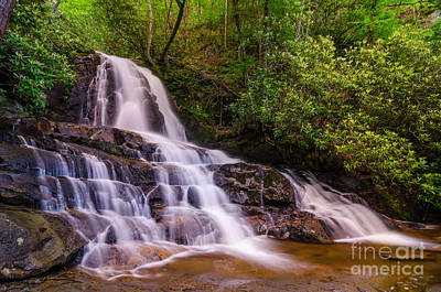 Mountain Laurel Photograph - Laurel Falls by Anthony Heflin