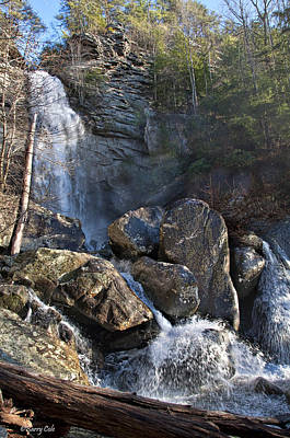 Photograph - Laurel Falls Pocket Wilderness by Barry Cole