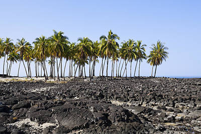 Photograph - Lava Beach by Kelley King