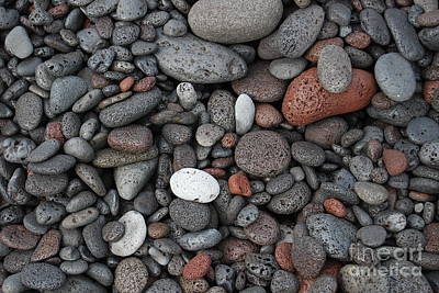 Photograph - Lava Beach Rocks by Jani Freimann