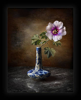 Photograph - Lavatera Mallow In Vase by Endre Balogh
