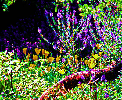 Digital Art - Lavender And Gold by Joseph Coulombe
