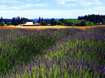 Photograph - Lavender Barn by Mamie Gunning