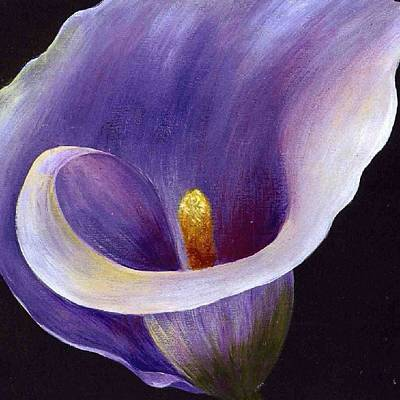Painting - Lavender Calla Lily by Tracey Harrington-Simpson