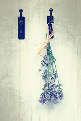 Dried Photograph - Lavender by Amanda Elwell