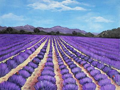 Lavender Field In Provence Original
