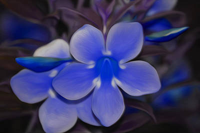 Clock Face Mixed Media - Lavender Flower by Jimi Bush