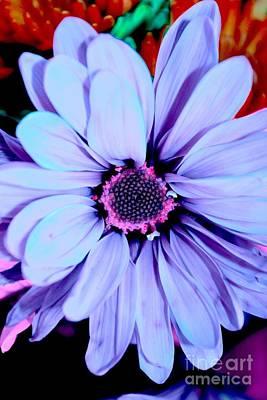 Lavender Flower Art Print by LLaura Burge