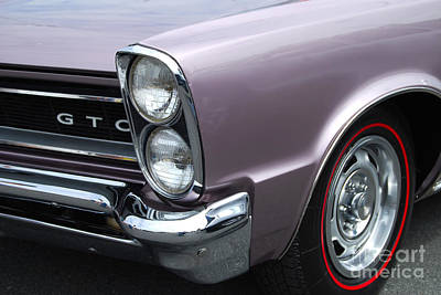 Photograph - Lavender Gto Closeup by Mark Spearman