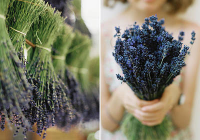 Photograph - Lavender by Kirstin Mckee