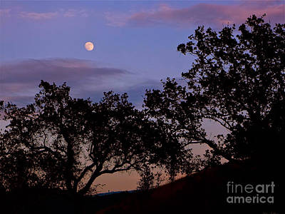 Lavender Moon Twilight Art Print by Gem S Visionary
