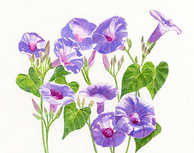 Morning Glories Painting - Lavender Morning Glory Flowers by Sharon Freeman