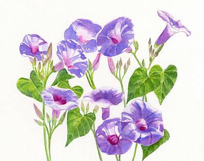 Lavender Morning Glory Flowers Art Print by Sharon Freeman