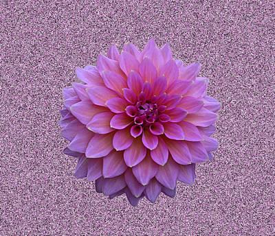 Update Digital Art - Lavender On Sandstone by Paul Pecora