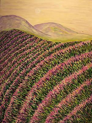 Lavender Original