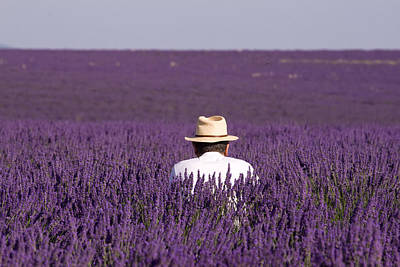 Provence Photograph - Lavender - Provence by Karim SAARI