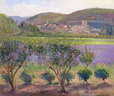 Quince Painting - Lavender Seen Through Quince Trees by Timothy  Easton