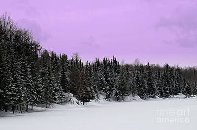 Art Print featuring the photograph Lavender Skies by Bianca Nadeau