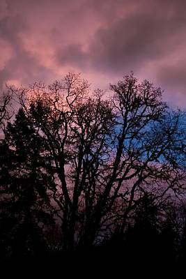 Photograph - Lavender Storm by Tyra  OBryant