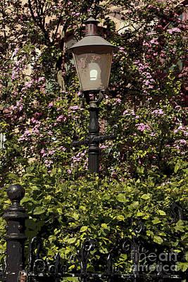Flowers Photograph - Lavender Streetlamp by Alison Gunn