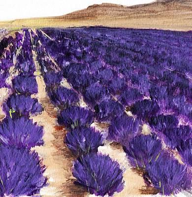 Decor Drawing - Lavender Study - Marignac-en-diois by Anastasiya Malakhova