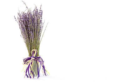 Lavender Art Print by Tom Gowanlock
