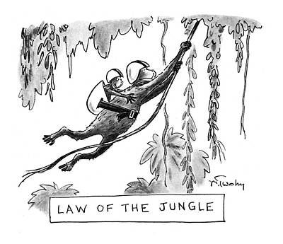 Monkeys Drawing - Law Of The Jungle by Mike Twohy