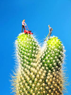 Lawn Mowing On Cactus Art Print by Paul Ge