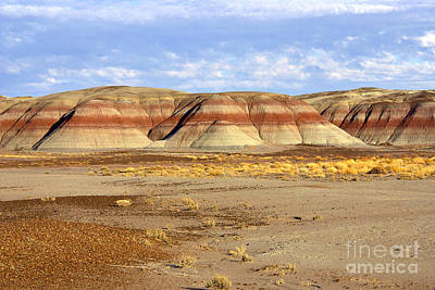Layers And Landform - The Painted Desert Art Print by Douglas Taylor