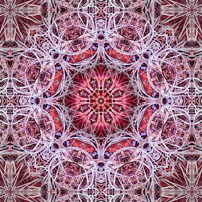 Digital Art - Layers Kaleidoscope by Francesa Miller