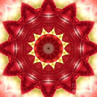 Concentration Digital Art - Layers Of Red Petals On Petals by Dawn Boyer