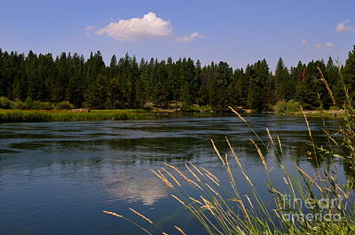 Photograph - Lazy Day On The River by Johanne Peale