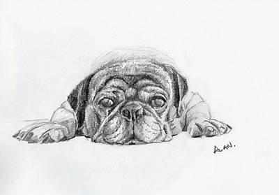 Lazy Dog Original by Alan Smith